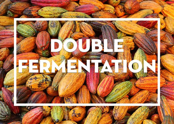 Double Fermentation